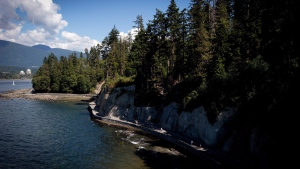 A file image of the Stanley Park seawall near Siwash Rock in Vancouver, B.C., on Sunday August 25, 2013. Vancouver police are searching for a man around Stanley Park after he allegedly tried to grab an eight-year-old girl Friday morning. (Darryl Dyck/THE CANADIAN PRESS)