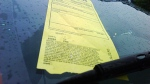 A parking ticket is affixed to the windshield of a vehicle on Wednesday June 9, 2010.