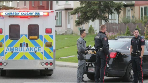 Police Officer Hit By Car In Southeast Calgary Ctv