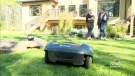 CTV Edmonton: Robots mowing the lawn
