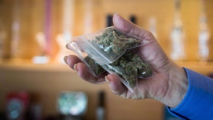 A bag of marijuana is held up at a medical marijuana dispensary in Vancouver on Friday May 1, 2015. (Darryl Dyck / THE CANADIAN PRESS)