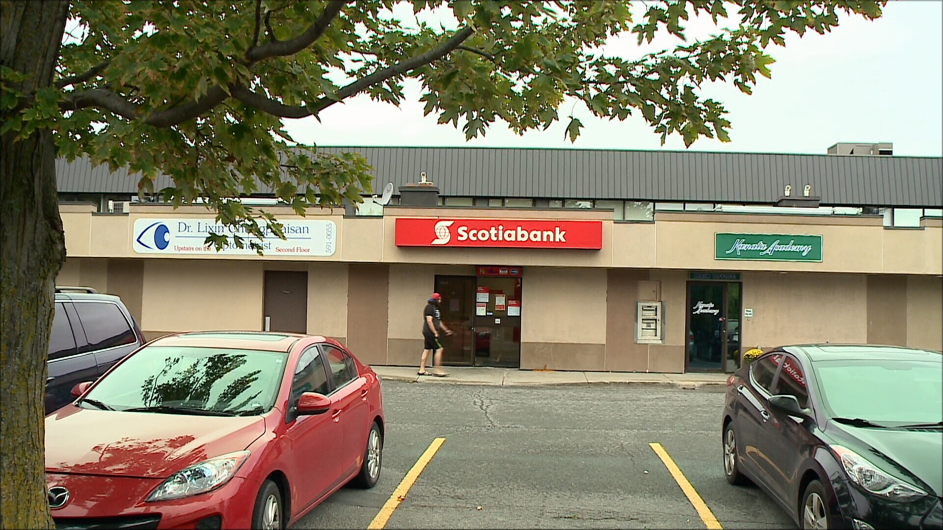 Scotiabank fairview branch zoo