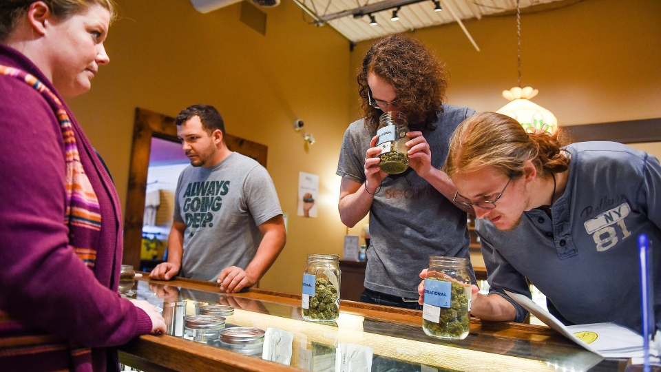 From left, Suzy Presson helps Kevin Sager, Matt Branz, and Zach Griffin shop at Organic Alternatives during Colorado's marijuana tax holiday in Fort Collins, Colo., Wednesday, Sept. 16, 2015. (Erin Hull / The Coloradoan via AP)