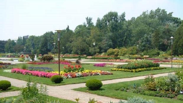 Jackson park Windsor