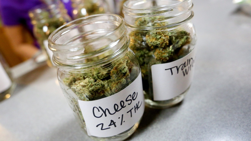 Various strains of marijuana are displayed at CannaMedicine, in Salem, Ore., during the first day of legal recreation sales in the state on Thursday, Oct. 1, 2015. (Brent Drinkut / Statesman-Journal)