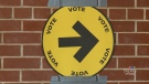 CTV Ottawa: Delays to vote at advance polls