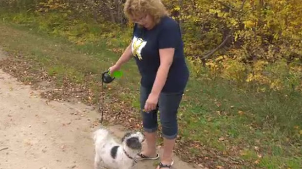 Heather Werner, a cabin owner in the area, said it is concerning to have so many wolves attacking family pets.