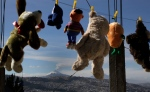 In this Thursday, Oct. 8, 2015 photo, stuffed animals hang from a clothesline at a home with a view of the Cotopaxi volcano in Quito, Ecuador. (Dolores Ochoa/AP Photo)