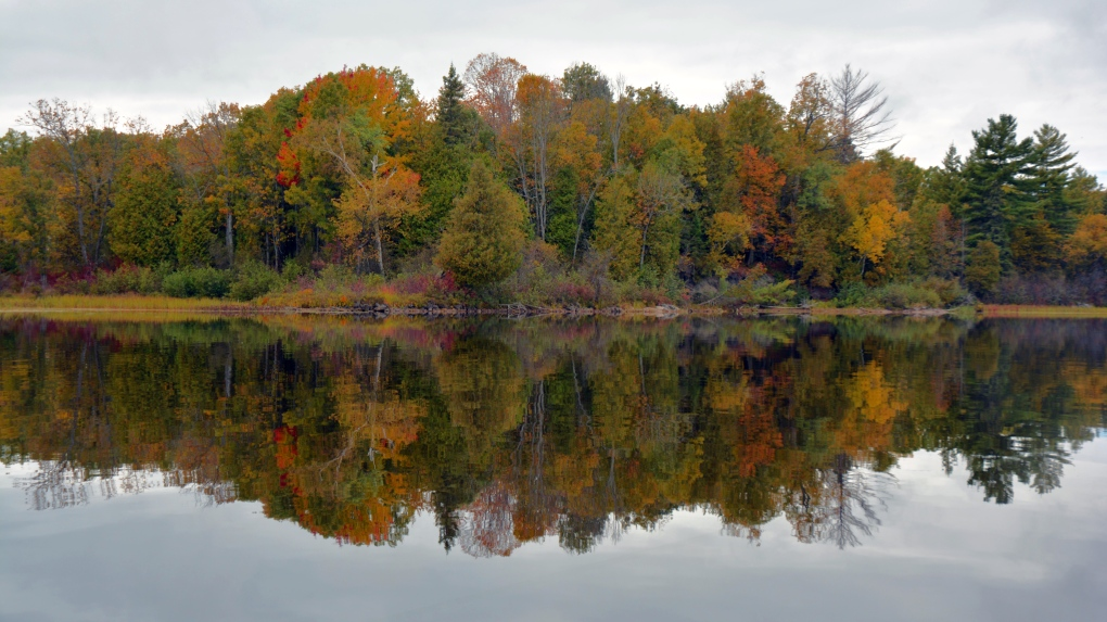 CTV Ottawa: Fall Colours