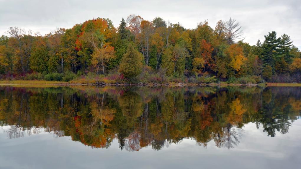 CTV Ottawa: Fall Colours