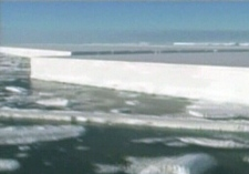 The Wilkins Ice Shelf has been disappearing at an alarming rate.
