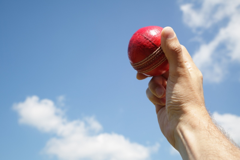 A man holds a cricket ball in the air (Brian A Jackson/shutterstock.com)