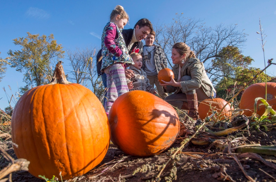 Liberal Leader Justin Trudeau picks pumpkins with his wife Sophie and daughter Ella-Grace, sons Xavier and Hadrien in Gatineau, Que., Monday, Oct. 12, 2015. (Paul Chiasson / THE CANADIAN PRESS)