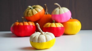 'No carve' pumpkins are a new take on a classic Halloween tradition. (Amrita Singh / PrettyFrugalLiving.com)