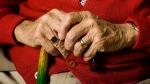 Seniors. (Michael Drager / shutterstock.com)