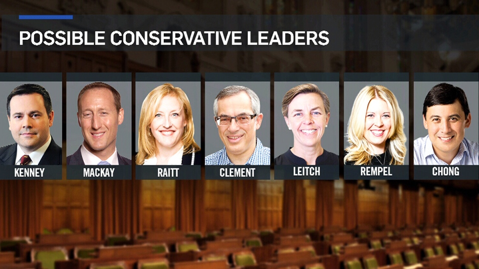 Possible Conservative Leader candidates