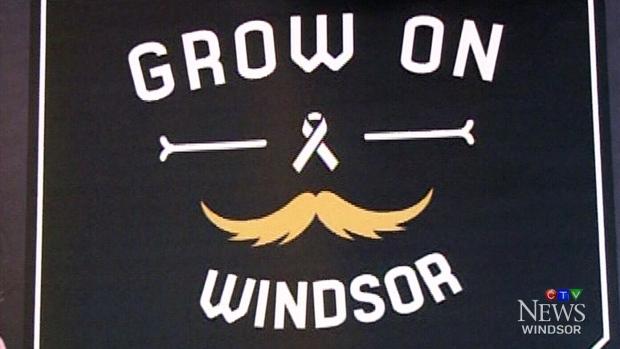 Grow on windsor campaign raises more than k ctv news