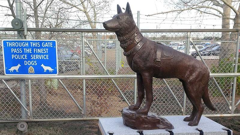 Dog Kennels North Vancouver