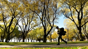 A member of the Canadian military walks along the lakeshore pathway during a fall day in Toronto on Friday, Oct. 30, 2015. (The Canadian Press/Nathan Denette)