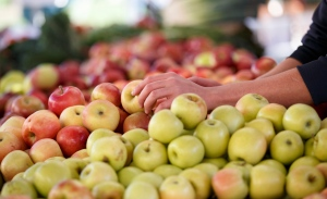 Apples are displayed at a farmers market in Arlington, Va., in this photo taken Oct. 5, 2014. (J. Scott Applewhite/AP)
