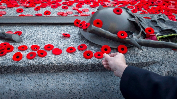 Poppy Important Marketing Remembrance Symbol For Royal Canadian