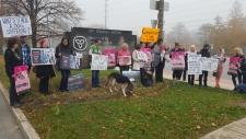 Protesting the charge against Anita Krajnc