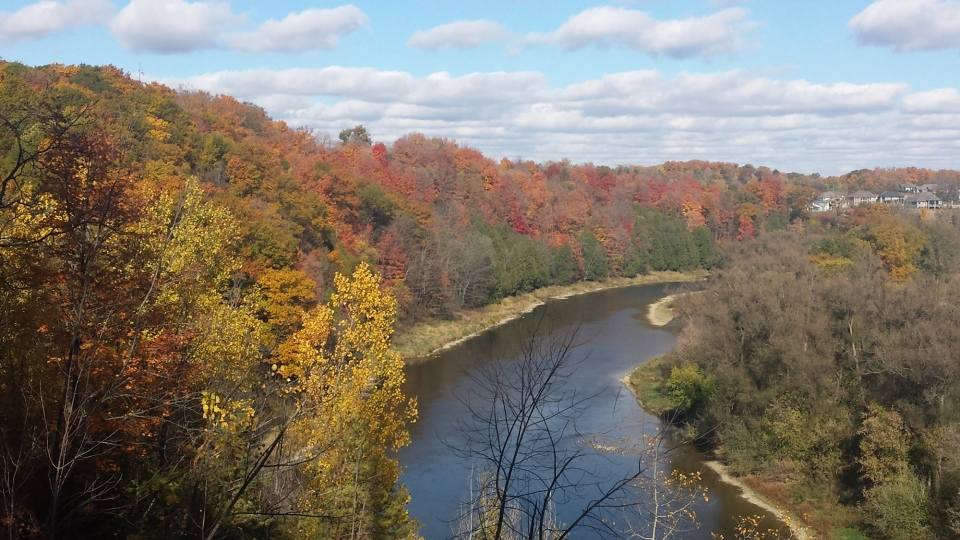 Fall colours line a waterway in Homer Watson Park in Kitchener on Thursday, Oct. 22, 2015. (Dan Lauckner / CTV Kitchener)