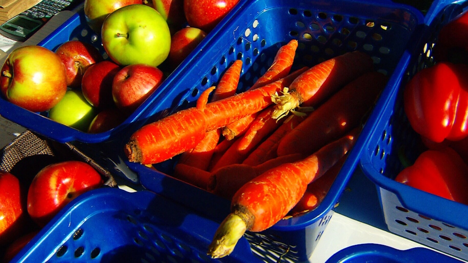 A group of Montreal university students hopes to cut down on wasted food by buying ugly, unwanted vegetables from farmers.