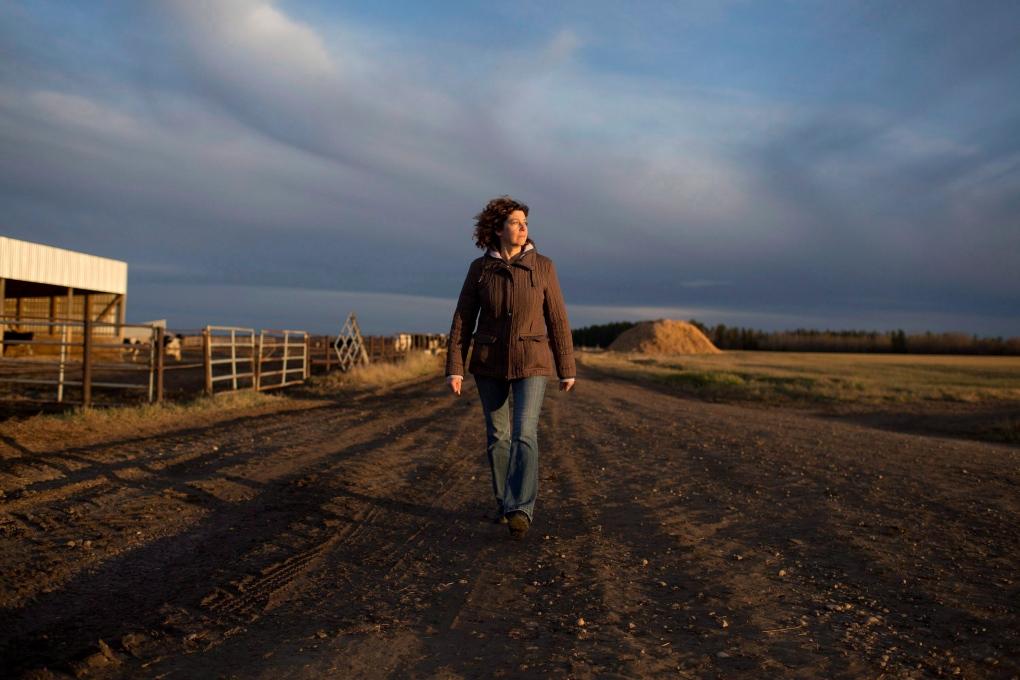 Saken farm in Alberta