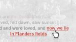 Flanders Field poem interactive