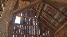 Stittsville Barn