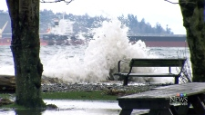 CTV Vancouver: Preparations for king tide