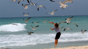 A child plays with seagulls at the beach in Playa del Carmen, Mexico, on Oct. 27, 2011. (Marco Ugarte / AP)