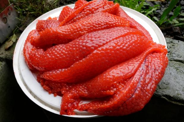Salmon eggs
