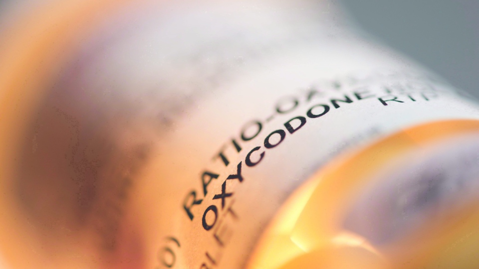 Prescription pill bottle containing oxycodone is shown on June 20, 2012. (Graeme Roy/The Canadian Press)
