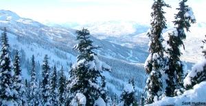 Snowmobiler dies in accident near Whistler