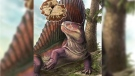 """Dimetrodon is shown with an overlay of the """"Bathygnathus"""" fossil from PEI, with a Walchia tree in the background. (Danielle Dufault)"""