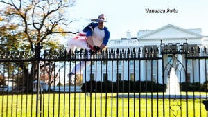The White House was on lockdown after a man jumped the fence on the north lawn wrapped in an American flag and carrying a folder in his mouth. (Vanessa Pena)