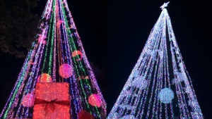 David Richards from Australia breaks the Guinness World Record for having the most lights on a Christmas tree, with 518,838 of them. (GuinnessWorldRecords)