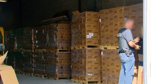 Stolen cargo can range from high priced electronics, cars and booze to everyday products like cheese, candy, toilet paper and household detergents (W5).