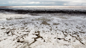 This screenshot from Google Street View shows sea ice in the Arctic tundra (Google Street View)