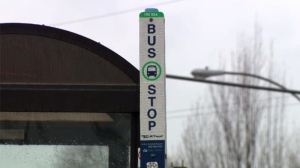 A man is in police custody for a series of alleged assaults connected to BC Transit.