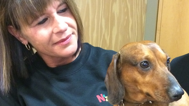 Brenda Johnson holds five-year-old Peanut, a paralyzed Dachshund from London, Ont. delivered by Bison Transport on Saturday.