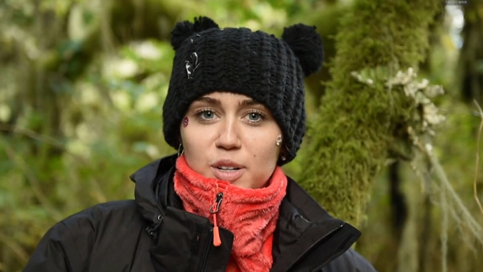 Miley Cyrus visits B.C.'s Great Bear Rainforest.