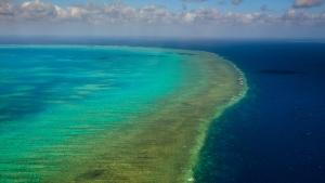 Aerial View of Arlington Reef in Great Barrier Reef Marine Park, Australia. (Pete Niesen / Shutterstock.com)