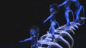 Cirque du Soleil's show 'Toruk.' (File Photo)