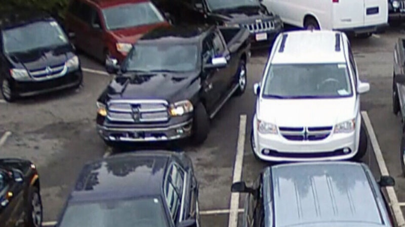 Surveillance footage taken from a B.C. car dealership appears to catch a very brazen thief.
