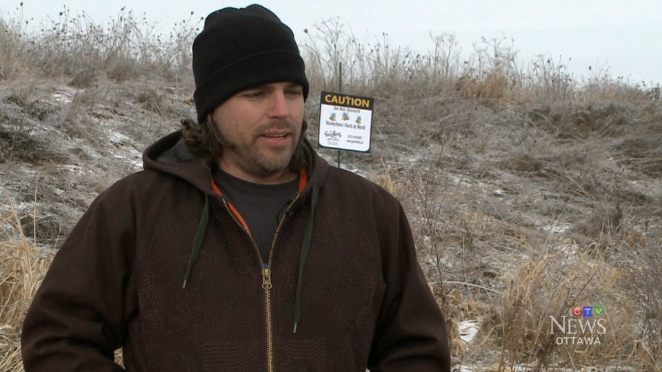 Matt Gee discusses the theft of 30,000 bees from a property in Ottawa, in Dec. 2015.