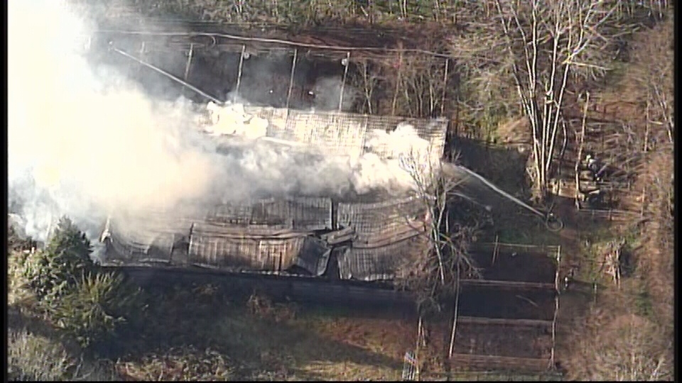 A passerby may have saved the lives of several horses after setting them free during a barn fire in Surrey, B.C. on Dec. 30, 2015. (CTV News).