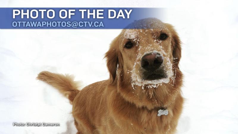 Christal Cameron/CTV Viewer